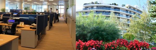 les dauphinettes nettoyage bureaux entreprises immeuble val de marne 94. Black Bedroom Furniture Sets. Home Design Ideas